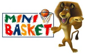 mini_basket_3